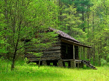 Bone Valley cabin, GSMNP